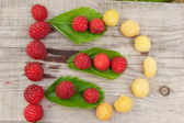 The composition of the ripe and juicy berries of raspberry — Stock Photo