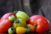 Colorful and different size tomatoes — Stockfoto