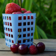 Stock Photo: Wild strawberry, raspberries and currants