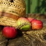 elma, buğday ve hasır şapka — Stok fotoğraf #29542487