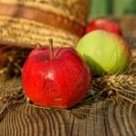 elma, buğday ve hasır şapka — Stok fotoğraf #29542621