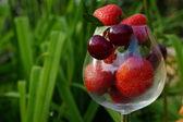 Taze yaz meyveleri — Stok fotoğraf