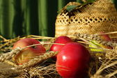Apples, wheat ears and a straw hat — Stock Photo
