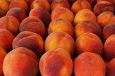 Perziken — Stockfoto
