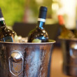 Two bottles of wine and ice bucket — Stock Photo