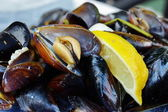 Steamed mussels. — Stock Photo