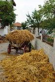 Rural street. — Stock Photo