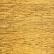 Bamboo Panel — Stock Photo