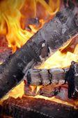 Abedul leña en el fuego de la llama — Foto de Stock