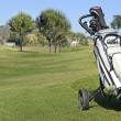 Golf Trolley — Stockfoto #28158417
