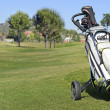 Golf Trolley — Stock fotografie #28158417