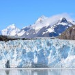 Glacier bay — Photo