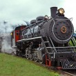 Steam train — Stock Photo #28168971