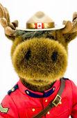 Juguete suave del alce de la real policía montada del canadá — Foto de Stock
