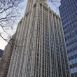Woolworth Building facade — Stock Photo #28172967