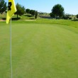 Golf course and yellow flag — Stock Photo #28320979