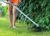 Mowing the Grass — Foto Stock