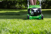 Mowing the lawn. — Stock Photo