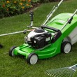 Green lawnmower, weed trimmer, rake and secateurs in the garden — Stock Photo #32169295
