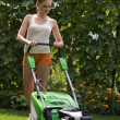 Mowing the lawn — Stock fotografie