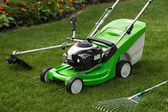 Green lawnmower, weed trimmer, rake and secateurs in the garden — Stock Photo