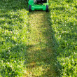 Stock Photo: Mowing the lawn
