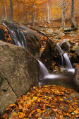 Pequeño salto de agua en otoño. Montseny. — Foto Stock