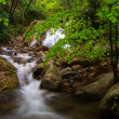 Foto de Stock  : Waterfall and river in spring. Montseny.