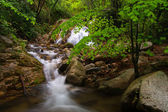 Waterfall and river in spring. Montseny. — Stock fotografie