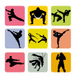 Martial arts — Stock Vector