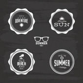 Summer Labels — Stock Vector