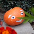 Pumpkin in the garden, garden decoration — Stock Photo