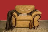 Een comfortabele stoel — Stockfoto