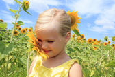 Girl in a field of bright sunflowers — Stock Photo
