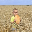 Stock Photo: Boy in wheat field
