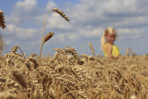 Girl in wheat field — Stockfoto