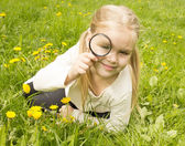 Girl considers dandelions flower through a magnifying glass — Stock Photo