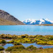 Stock Photo: Primrose Lake in the mountains of Trans-Ili Alatau