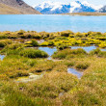Primrose Lake in the mountains of Trans-Ili Alatau — Stock Photo