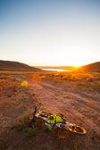Flicka på en cykel i den uppgående solen strålar — Stockfoto