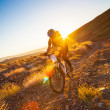 Stock Photo: Girl on bicycle in rays of rising sun