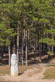 Estatua de piedra — Foto de Stock