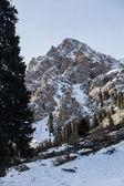 Mountains — Stock fotografie