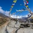 Stock Photo: Nepalese sacred stupa
