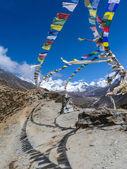Nepalese sacred stupa — Stock Photo