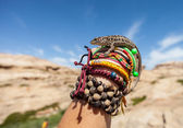 Awesome lizard on hand — Stock Photo