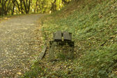 The perspective of the row of benches in autumn park while fall — Stock Photo