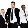 Three business people — Stock Photo #29904037