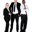 Three business people — Stock Photo #29904063
