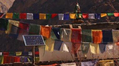 Solar panel among Tibetan prayer flags. — Stock Video